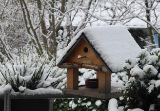 Image d'une mangeoire à oiseaux