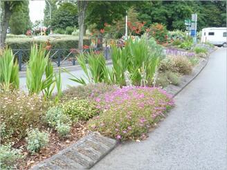 La Ville privilégie les plantes vivaces
